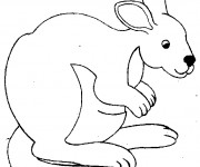 Coloriage et dessins gratuit Kangourou baissant la tête à imprimer