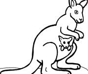 Coloriage et dessins gratuit Kangourou couleur à imprimer