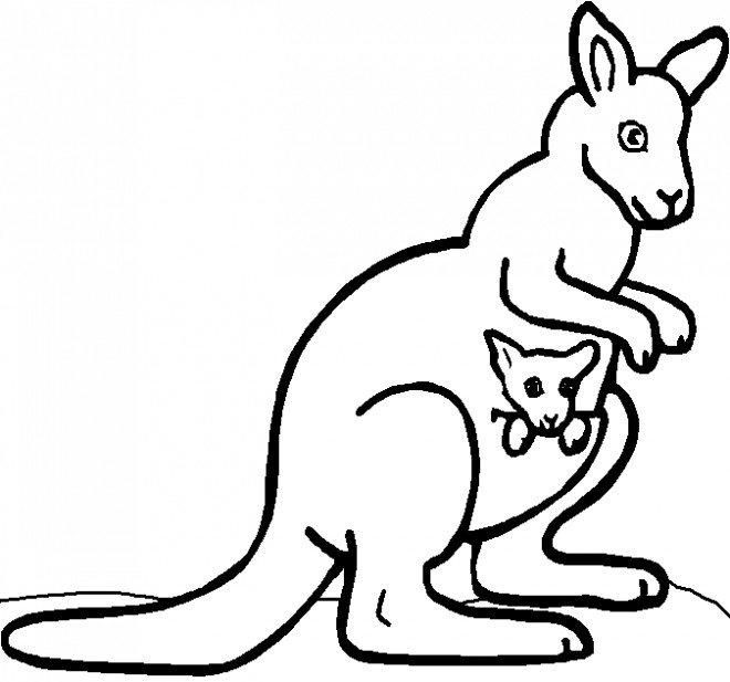 Coloriage et dessins gratuits Kangourou couleur à imprimer