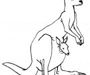 Coloriage et dessins gratuit Kangourou maternelle à imprimer