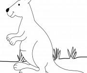 Coloriage et dessins gratuit Kangourou pour enfant à imprimer