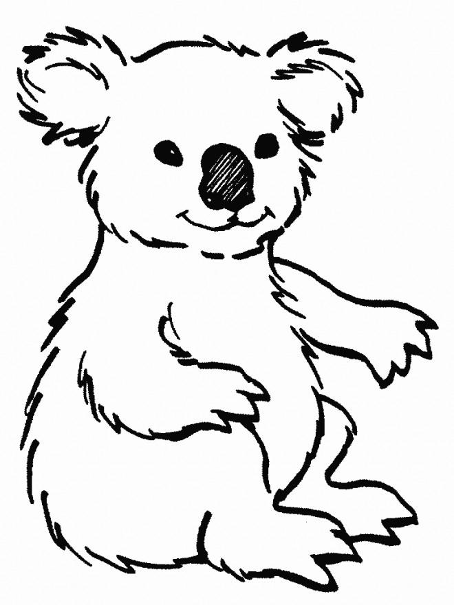 Coloriage Koala Facile Dessin Gratuit à Imprimer
