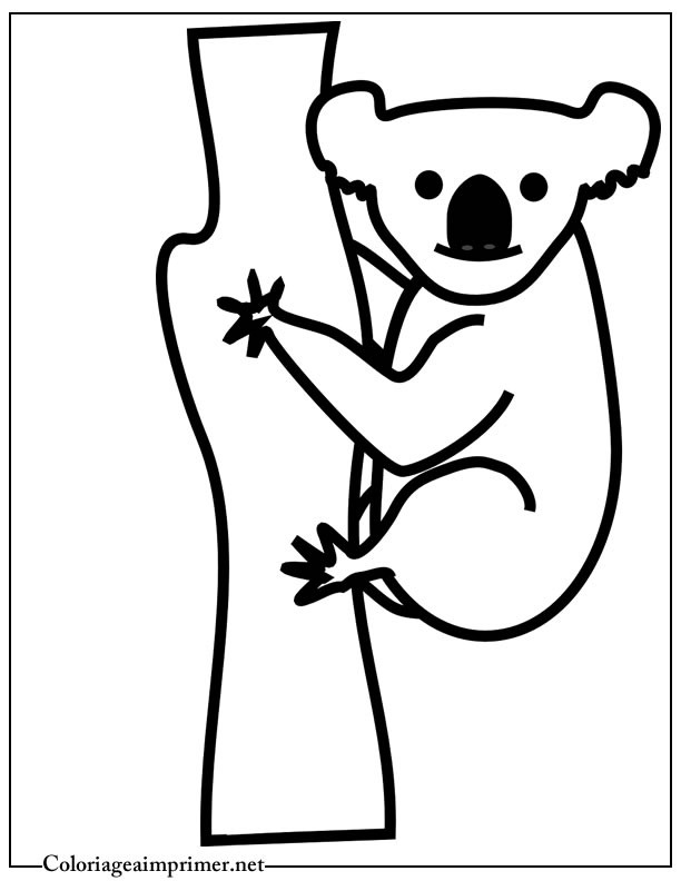 Coloriage et dessins gratuits Koala maternelle à imprimer