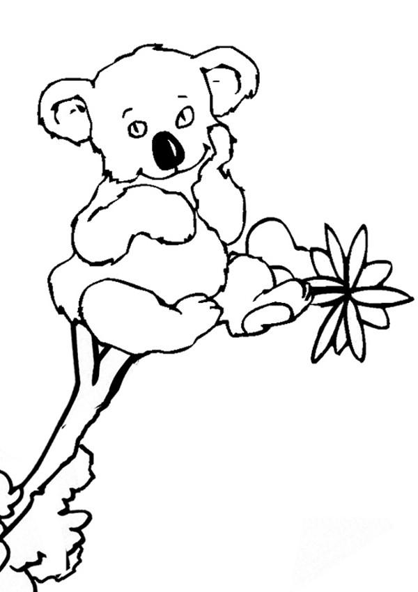 Coloriage et dessins gratuits Un Koala te regarde à imprimer