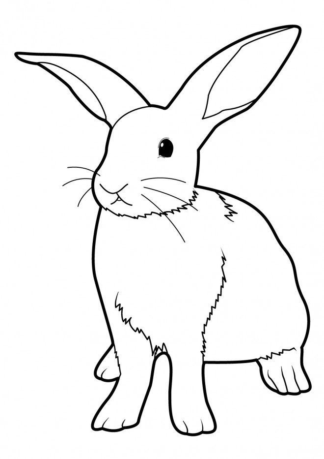 Coloriage et dessins gratuits Lapin stylisé à imprimer