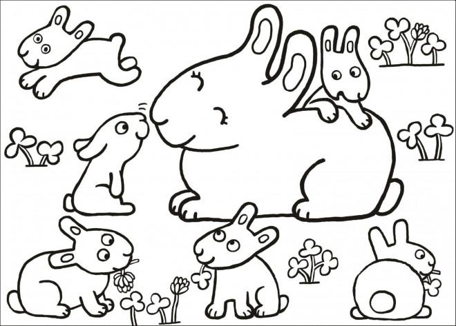 Coloriage lapins en famille dessin gratuit imprimer - Coloriage lapin fleur ...