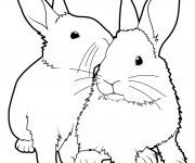Coloriage et dessins gratuit Lapins vecteur à imprimer