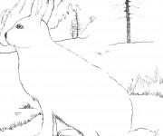 Coloriage dessin  Lievre 7