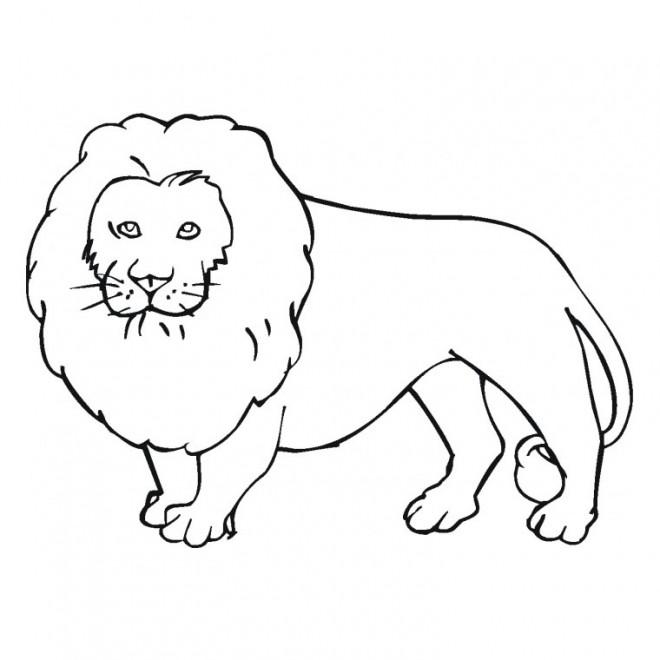 Coloriage et dessins gratuits Lion 10 à imprimer