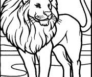 Coloriage Lion 29