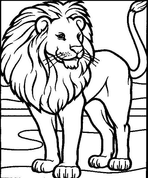 Coloriage et dessins gratuits Lion 29 à imprimer