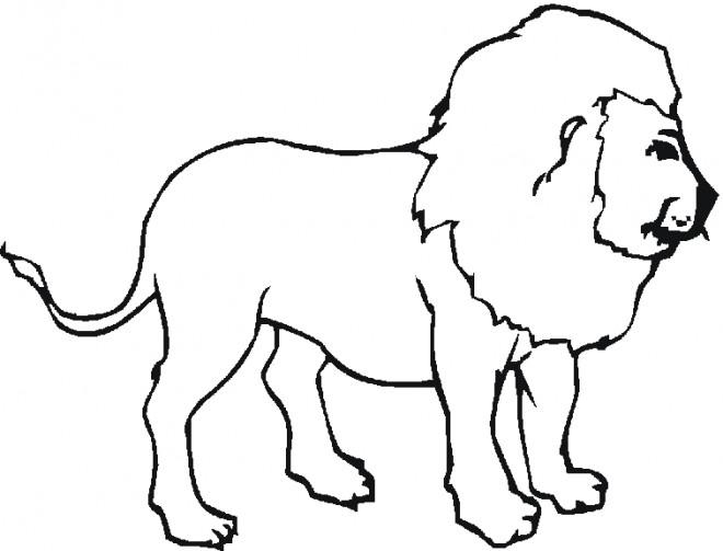 Coloriage et dessins gratuits Lion 31 à imprimer