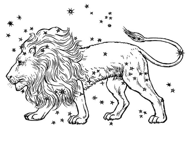 Coloriage et dessins gratuits Lion 41 à imprimer