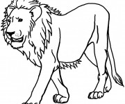 Coloriage Lion 8
