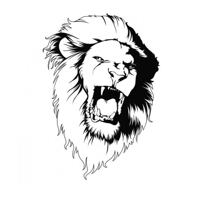 Coloriage Lion 9 Dessin Gratuit A Imprimer
