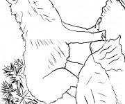 Coloriage et dessins gratuit Loup 11 à imprimer