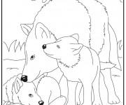 Coloriage et dessins gratuit Loup 15 à imprimer