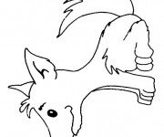Coloriage et dessins gratuit Loup 18 à imprimer