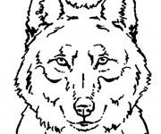 Coloriage Loup 2