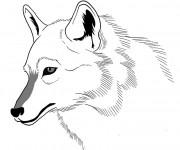 Coloriage et dessins gratuit Loup 20 à imprimer
