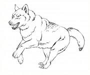 Coloriage et dessins gratuit Loup 3 à imprimer