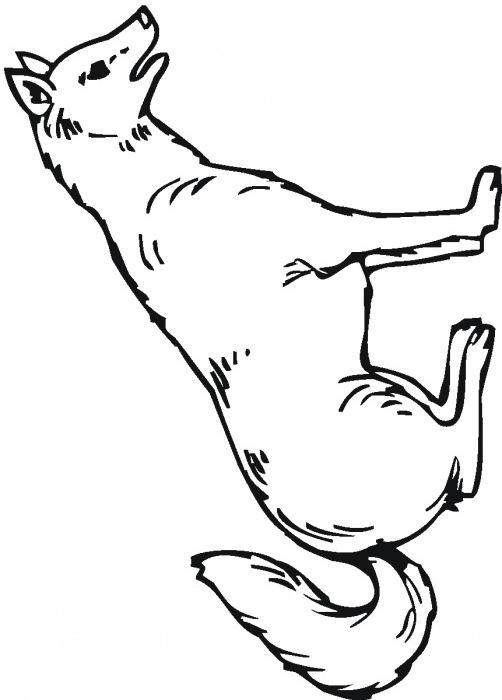 Coloriage et dessins gratuits Loup 7 à imprimer
