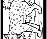 Coloriage Lynx couleur