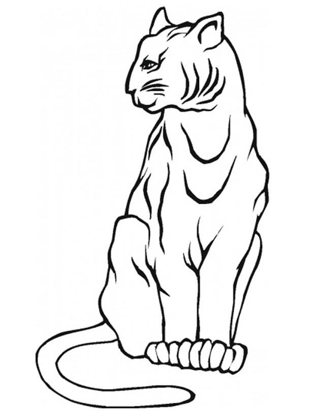 Coloriage Lynx Gratuit A Imprimer
