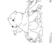 Coloriage et dessins gratuit Marmotte montagne à imprimer