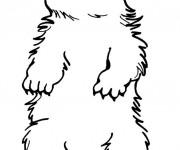 Coloriage et dessins gratuit Marmotte portrait à imprimer