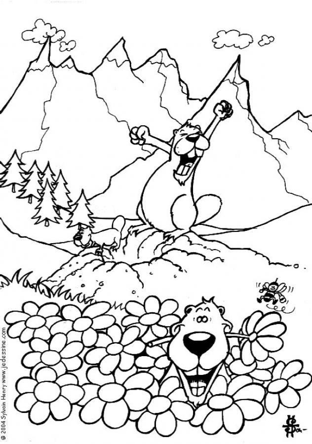Coloriage et dessins gratuits Marmotte se réveille à imprimer