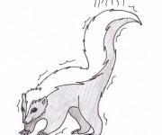 Coloriage dessin  Moufette 5