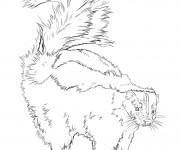 Coloriage dessin  Moufette 9