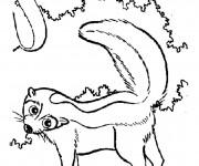 Coloriage et dessins gratuit Moufette sur l'arbre à imprimer