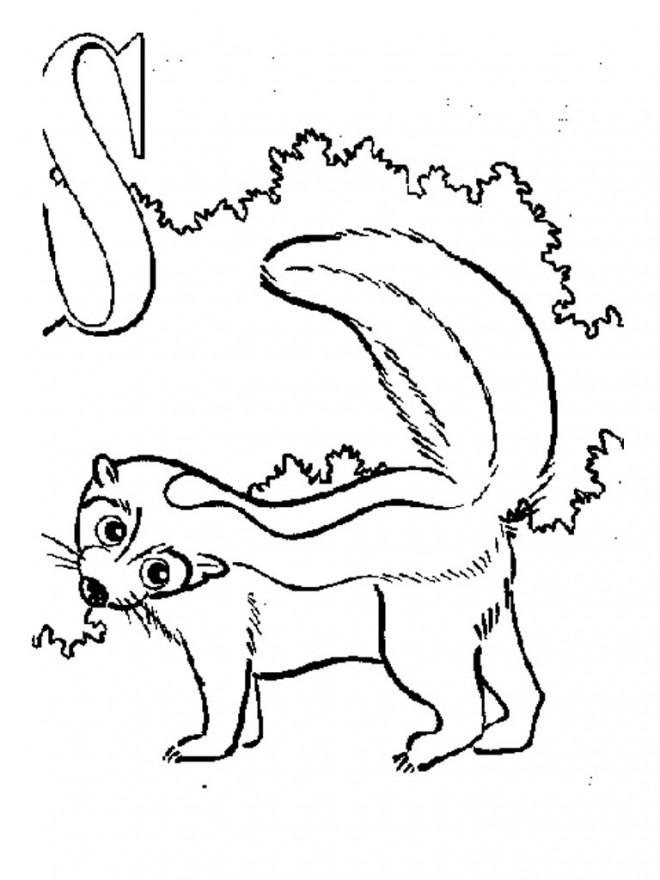 Coloriage et dessins gratuits Moufette sur l'arbre à imprimer