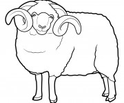 Coloriage Gros Mouton