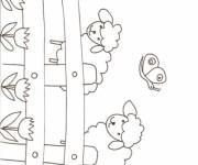 Coloriage dessin  Mouton 18