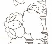 Coloriage dessin  Mouton 5