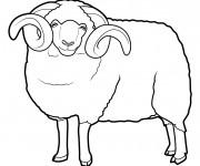 Coloriage dessin  Mouton 8