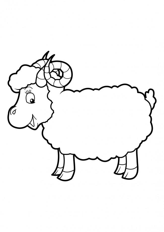 Coloriage mouton avec cornes dessin gratuit imprimer - Dessin mouton rigolo ...