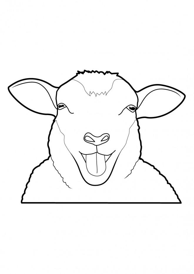 Coloriage mouton rigolo dessin gratuit imprimer - Dessin mouton rigolo ...