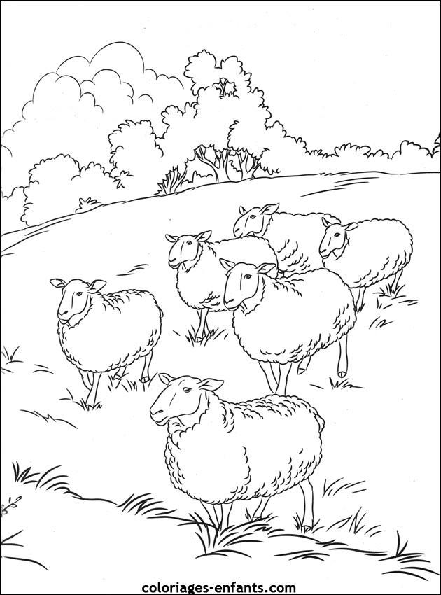 Coloriage et dessins gratuits Moutons en plein air à imprimer
