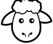 Coloriage Tête de Mouton