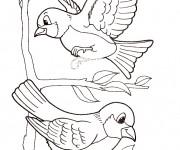 Coloriage dessin  Oiseau 10