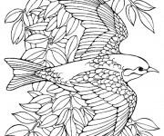 Coloriage dessin  Oiseau 11