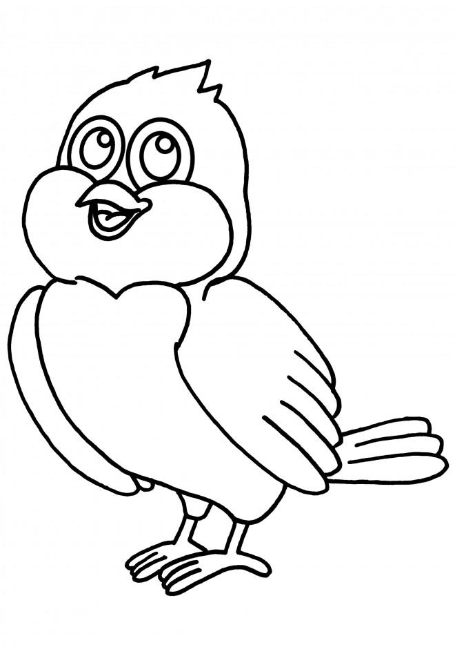 Coloriage oiseau couleur dessin gratuit imprimer - Dessin de martine a imprimer ...