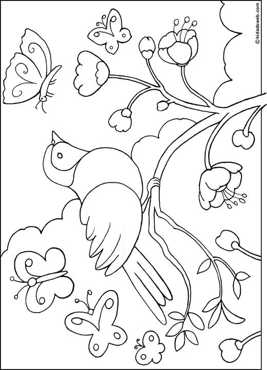 Coloriage Oiseau Dans La Nature Dessin Gratuit à Imprimer