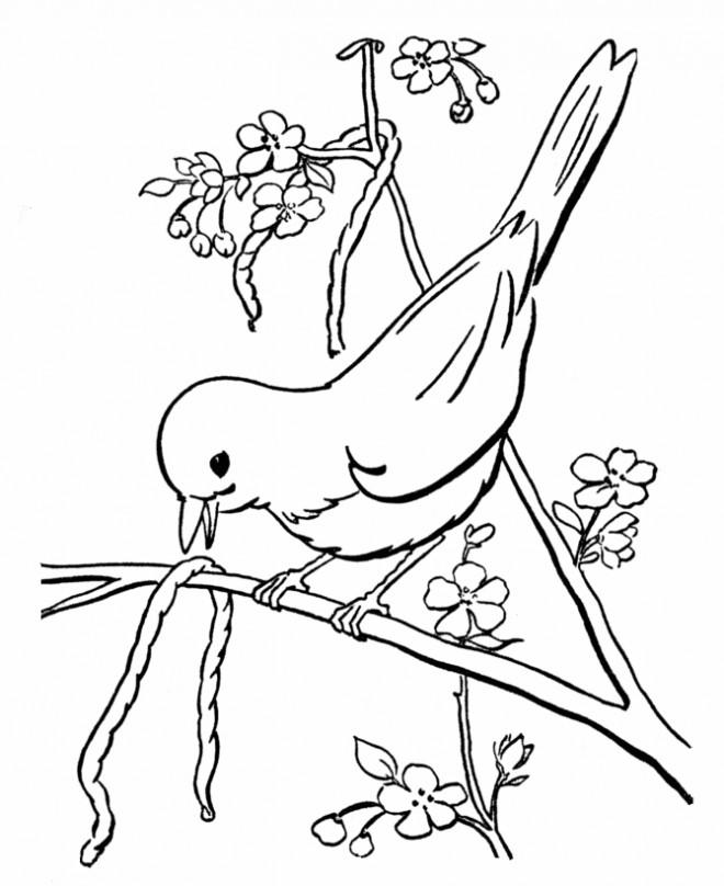 Coloriage et dessins gratuits Oiseau en chantant à imprimer