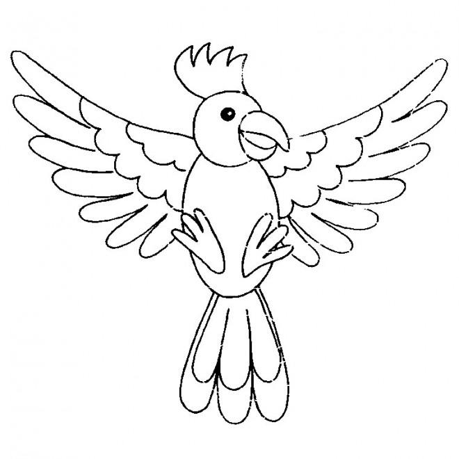 Coloriage Oiseau Perroquet Dessin Gratuit à Imprimer