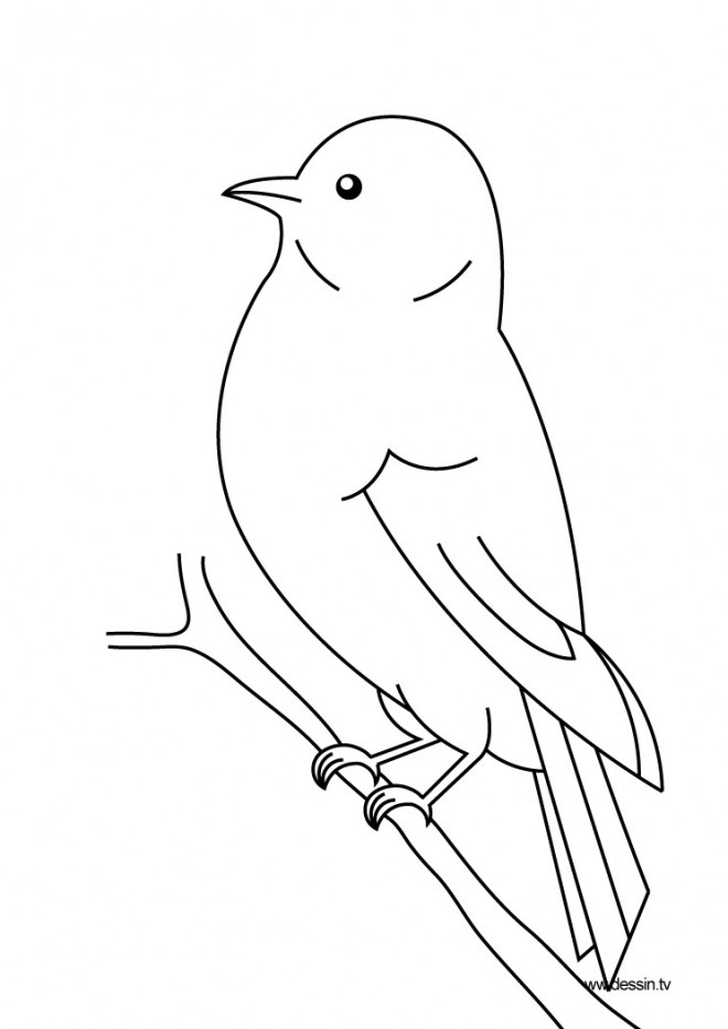 Coloriage oiseau simple dessin gratuit imprimer - Dessin facile de dragon ...